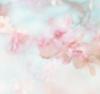sweetlacecharm userpic