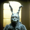 Frank, Plot Bunny