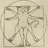tarsierus userpic