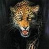 zhutkie_istorii userpic