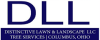 dllservices userpic