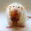 крыска любви