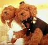 YutoYama bears