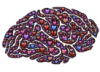 healthy_brains userpic