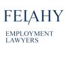 felahylaw userpic