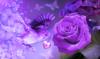 flowergirls93