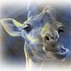 ля жираф