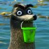 raccoonwounds userpic