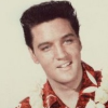 elvis_volunteer