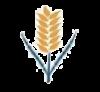 commoditybasis userpic