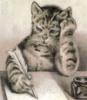 кот-пишет