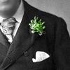 зеленая гвоздика
