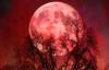crimson_moon_13 userpic