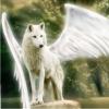 Lone Wolf Era [Omega]