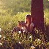 Rosa | ¯\(ºдಠ)/¯: books
