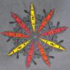 pobeach_kayaks userpic