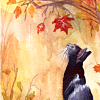lijahlover: Autumn black cat
