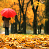 Autumn girl w/umbrella
