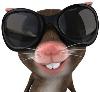 _office_rat userpic