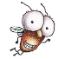 carelessfly userpic