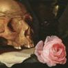 roses-skull
