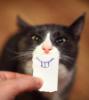 empathetic_i userpic