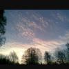 krili userpic