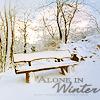 lijahlover: Christmas-Winter bench