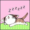 I'm SLEEPING