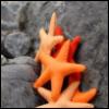 ravena_kade userpic