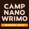 camp nano 201