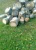 на траве дрова