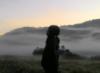 areesha_heveun userpic