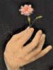 цветокъ