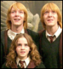 fred hermione george