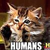 LOL: cat - humans