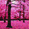 spring pink
