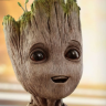 the middle of the road's fine with no cars around: groot