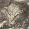 Лев из кельи