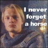 neverforgetahorse