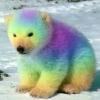 разноцветный медвежонок