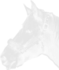 onehorse userpic
