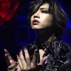 panda_chan24
