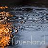 Nverland Rain