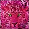 rosa_leopard userpic