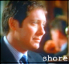 Alan Shore: profile