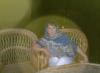 galimova_alfiya