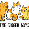 Ginger Boys
