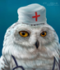 lab_doctor