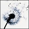 moonsofiego userpic